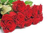 Rosas vermelhas belo buquê — Foto Stock