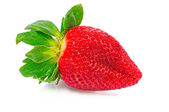 En mogen jordgubbe — Stockfoto