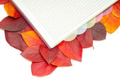 Notebook on red leafs — Stock Photo