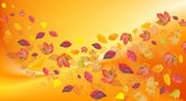 Fall leafs on variegated background — Stock Photo