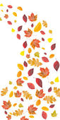 Flying fall leaves — Stock Photo