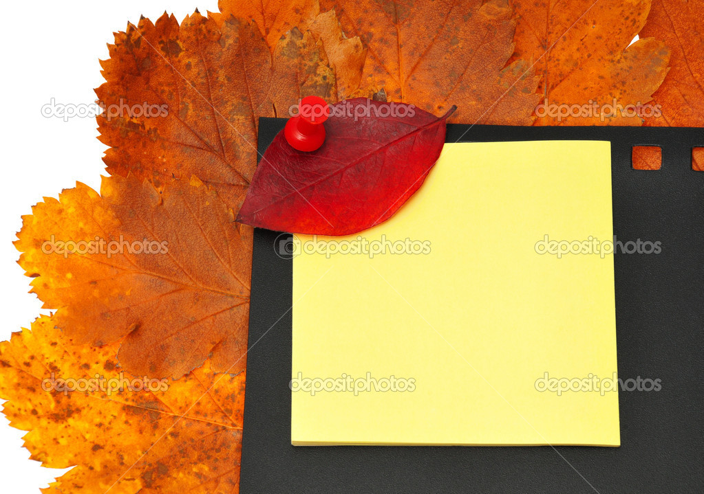 Red leaf to tack on notebook — Stock Photo #8915892