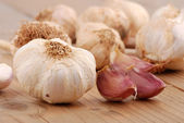 Cloves of garlic — Stock Photo
