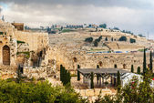 Mount of Olives in the Jerusalem — Stock Photo