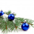 O Christmas tree! — Stock Photo
