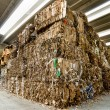 Recycling of waste paper - Foto Stock