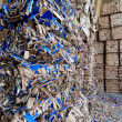 Recycling von Altpapier — Stockfoto