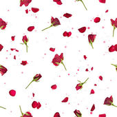 Seamless roses and petals in red — Stock Photo