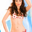 Stock Photo: Vogue style photo of sensual girl with long brown hair in bikini