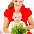 Stock Photo: Baby playing with plant while sitting on mothers laps