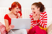 Two sly girlfriends using laptop to make something spicy — Stock Photo