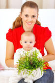 Baby playing with plant while sitting on mothers laps — Stock Photo