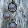 Three nails in the wooden gate — Stock Photo
