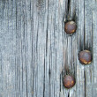 Old grey wooden board with three nails — Stock Photo