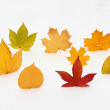 Stock Photo: Eight leaves on the white background