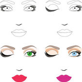Samples of woman face scheme for makeup application. Eps 10 — Stock Vector