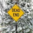 Stock Photo: Snowy road sign.