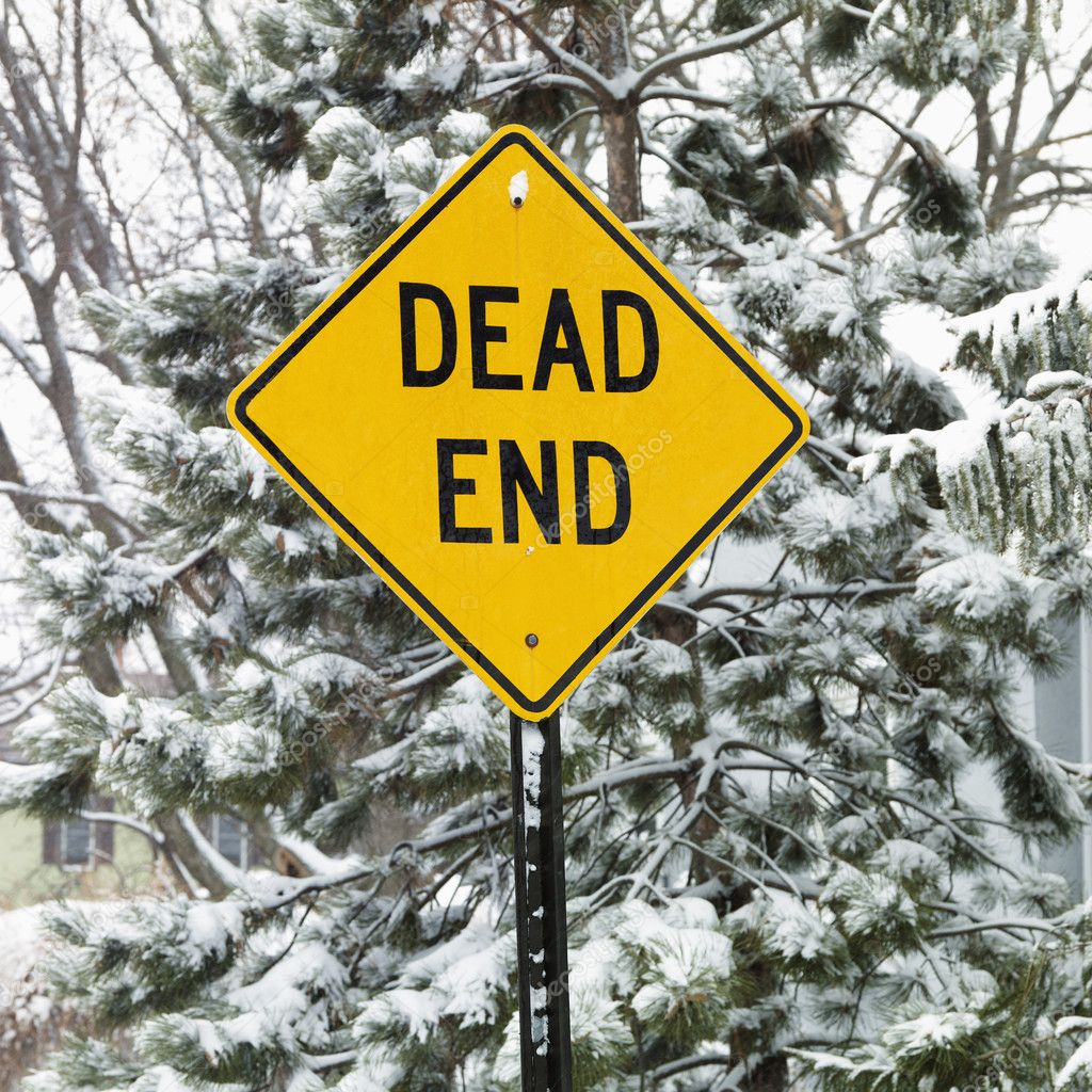 Snowy scene in suburb with evergreen trees and dead end road sign.  Stock Photo #9214898