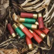 Shotgun shells. — Stock Photo #9223009