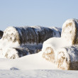 Snow on hay bales. — Stock Photo