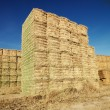 Stock Photo: Bales of hay.