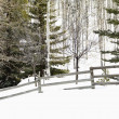 Snowy winter landscape. — Stock Photo