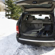 Stock Photo: SUV with ski equipment.