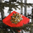 Present in tree. - Stockfoto