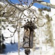 Hanging Wooden Birdhouse - 图库照片