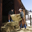 Attractive Couple Moving Hay Bales — Stock Photo #9225956