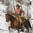 Stock Photo: Man Riding a Horse the Snow