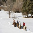 Group horseback riding in snow. — Stock Photo