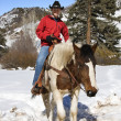 Man horseback riding in snow. — Stock Photo