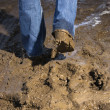 Legs walking through mud. - Stock Photo