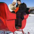 Sleigh ride. — Stock Photo #9226363