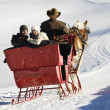 Sleigh ride in winter. — Foto de Stock