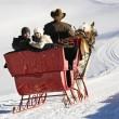 slee rijden in de winter — Stockfoto