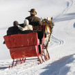 Horse-drawn sleigh ride. — Foto de Stock