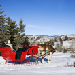 Winter sleigh ride. — Stock Photo