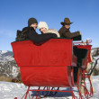 Sleigh ride in winter. — 图库照片