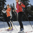 Stock Photo: Cross Country Snow Skiiers