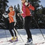 Cross Country Snow Skiiers — Stock Photo