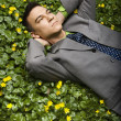 Businessman Lying in Flower Patch - Stockfoto