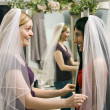 Friends trying on veils. — Stock Photo #9227541