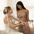 Stock Photo: Bridesmaid holding bride's veil.