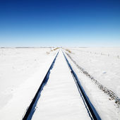 Snow covered railroad tracks. — Stock Photo
