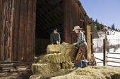 Attractive Couple Moving Hay Bales — Stock Photo