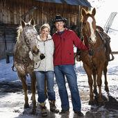 Çift holding atlar. — Stok fotoğraf