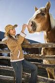 Woman petting horse. — Stock Photo