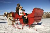 Horse-drawn sleigh ride. — Stock Photo